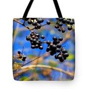 Winterberries II Tote Bag
