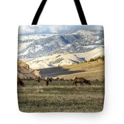 Wintering Grounds Tote Bag