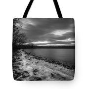 Winter's Bite Tote Bag