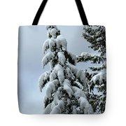 Winter's Burden Tote Bag