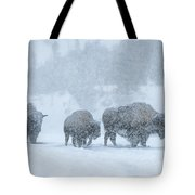 Winter's Burden Tote Bag by Sandra Bronstein