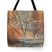 Winter's Dawn Tote Bag