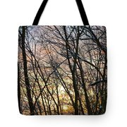 Winter's Delight Tote Bag