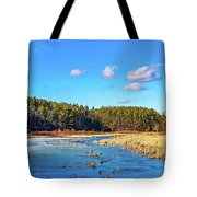Winter's Demise Tote Bag