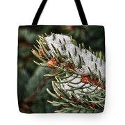 Winter's Fling Tote Bag