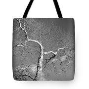 Winter's Ghost Tote Bag