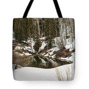 Winters Pond Tote Bag