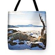 Winter's Silence - Pathfinder Reservoir - Wyoming Tote Bag