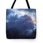 Winter's Solace Tote Bag