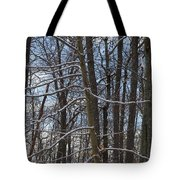 Winter's Touch Tote Bag