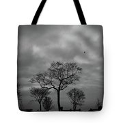 Winter's Trees  Tote Bag