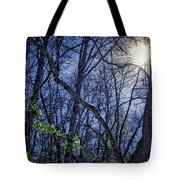 Wintersun Tote Bag