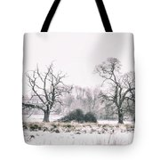 Wintery Morning Tote Bag