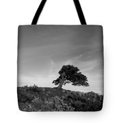 Winthrop Wa Tote Bag