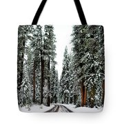 Wintry Forest Drive Tote Bag