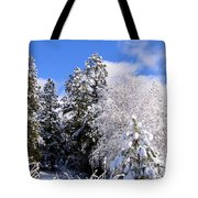 Wintry Morn Tote Bag