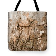 Wire In Wood Tote Bag