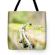 Wire On The Fence Tote Bag