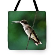 Wire Walker Young Male Ruby-throated Hummingbird    Tote Bag