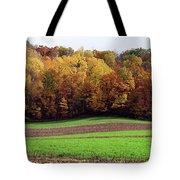 Wisconsin Colors Tote Bag