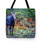 Wise And Strong Tote Bag