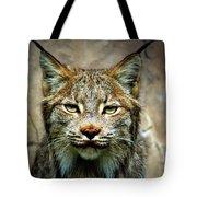 Wise Bob Cat Tote Bag