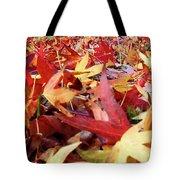 Wishing For Fall Tote Bag
