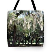 Wispy Willows Tote Bag