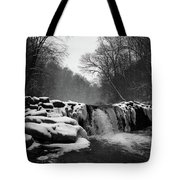 Wissahickon Snow Tote Bag