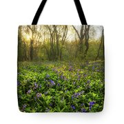 Wistow Wood Bluebells 1 Tote Bag