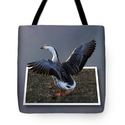 With A Nod Of The Head And A Twist Of The Tail Tote Bag