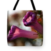 With Approach Of Dusk Tote Bag
