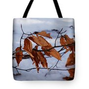 With Autumn's Passing Tote Bag