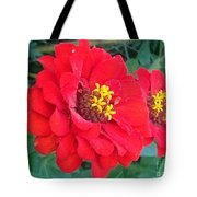With Beauty As A Pure Red Rose Tote Bag