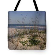 Withering Dunes Tote Bag