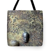 Without Bodies Tote Bag