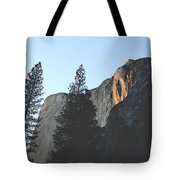 Without The Fall Tote Bag