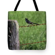 Willie Wagtail Tote Bag