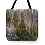 Wolf Creek Pass Forest Landscape Tote Bag