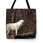 Wolf Howling In Forest Tote Bag