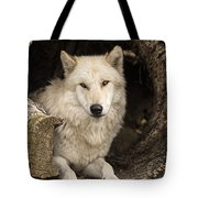 Wolf In A Log Tote Bag