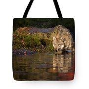 Wolf In Pond Tote Bag