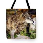 Wolf On Patorl Tote Bag