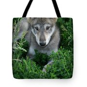 Wolf Pup Portrait Tote Bag