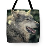 Wolf Rock Tote Bag