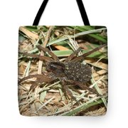 Wolf Spider With Babies Tote Bag