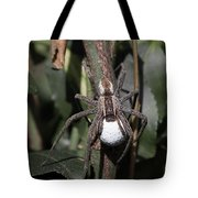 Wolf Spider With Egg Sac Tote Bag