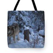 Wolf Wonderland Tote Bag