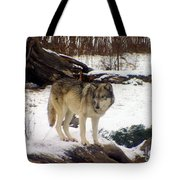 Wolfe In Winter Snow Tote Bag