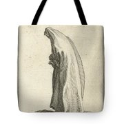 Woman With Long Veil Tote Bag